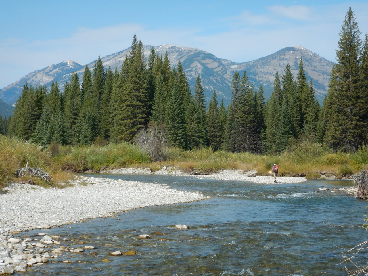 Flathead River Into The Wild Water